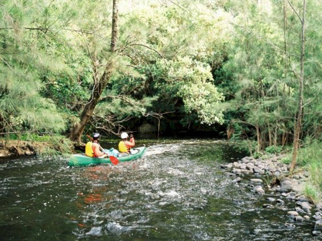 Canoeing Shoalhaven River